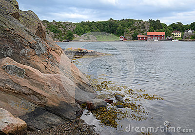 Fjord coast Swedish landscape
