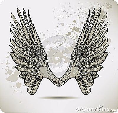 Flügel einer Krähe. Vektorabbildung.