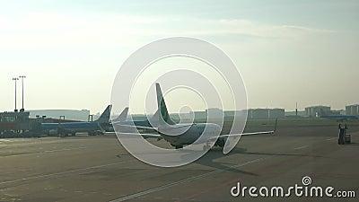 Flache Fluglinie Transavia-Fluglinien Morgen an Schiphol-Flughafen, Amsterdam stock video