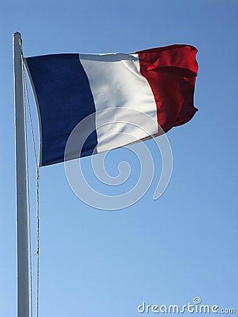 Flag #01