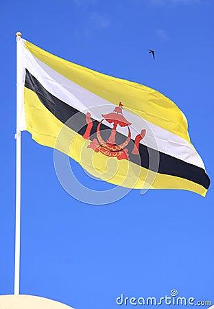 Flag of Brunei Darussalam