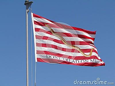 Flag Don t Tread on Me