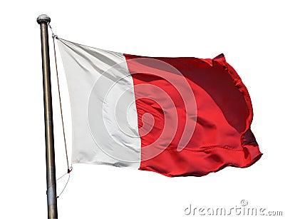 Flag of Dubai