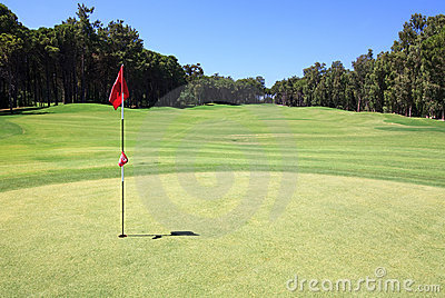 Flag on the golf course.