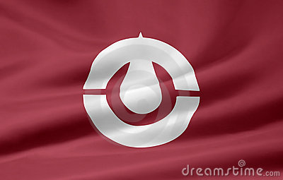 Flag of Kochi - Japan