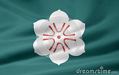 Flag of Saga - Japan