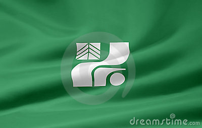 Flag of Tochigi - Japan