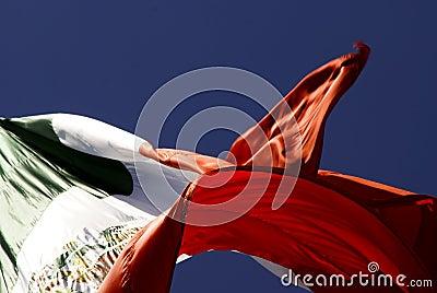Flaggamexikan
