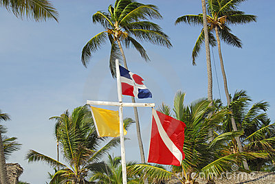 Flags on the beach