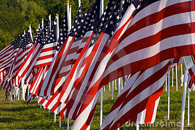 Flags in the Healing Fields for 9/11 Editorial Stock Image