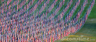 Flags in the Healing Fields for 9/11 Editorial Image