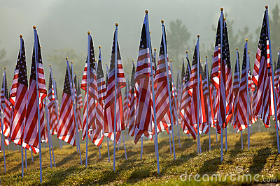Flags in the Healing Fields for 9/11 Editorial Stock Photo