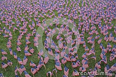 Flags memorial 3