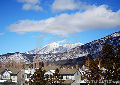 A Flagstaff Neighborhood in Winter