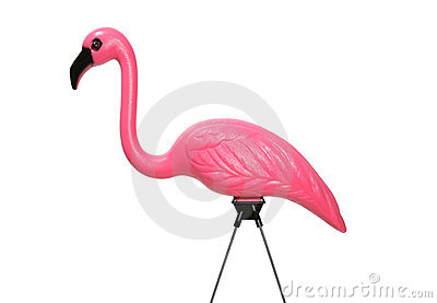 flamant rose de pelouse photographie stock image 1059392. Black Bedroom Furniture Sets. Home Design Ideas