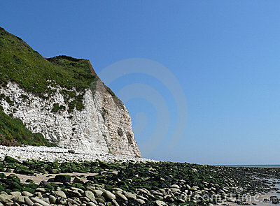 Flamborough cliff