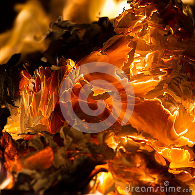 Free Flame When Burning The Paper Royalty Free Stock Photos - 87812148