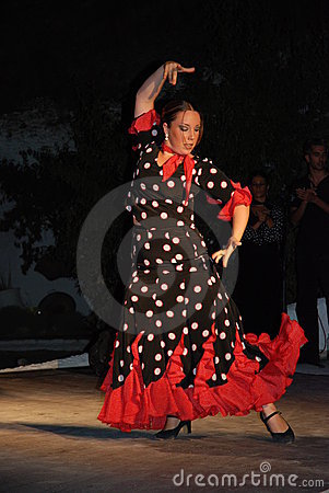 Flamenco Obraz Editorial