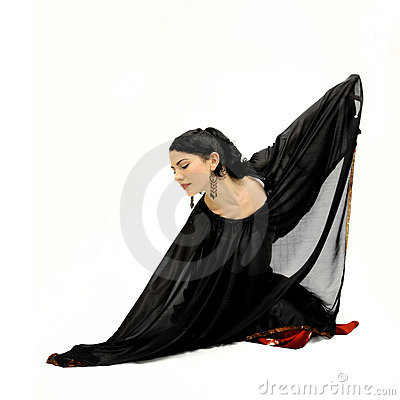 Free Flamenco Dancer Isolated Stock Images - 5484484