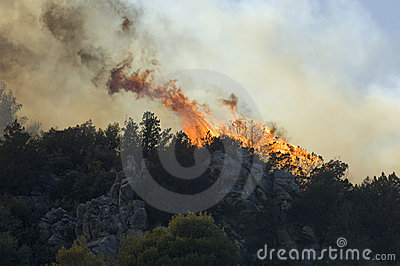 Flames - forest burning Athens Editorial Photo