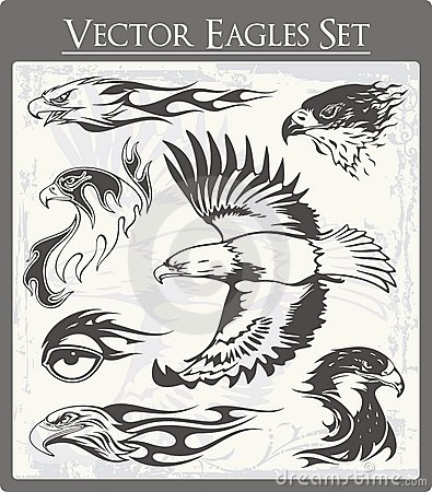 Flaming Eagle Illustrations Set