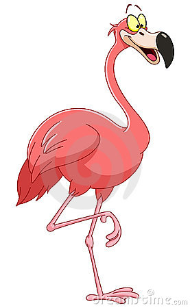 Free Flamingo Royalty Free Stock Photography - 19731697