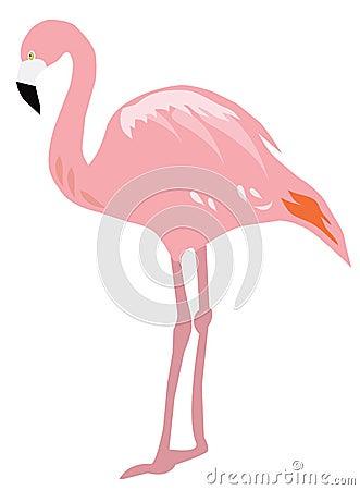Free Flamingo Royalty Free Stock Image - 72817636