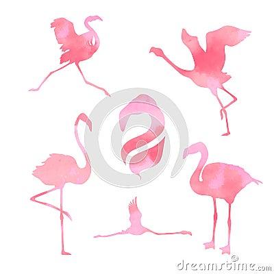 Free Flamingo Set Vector Stock Photo - 50927730