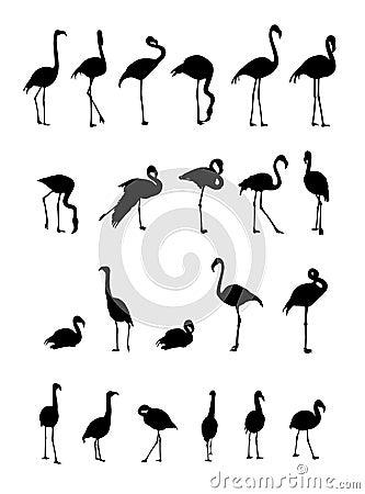 Free Flamingo Silhouettes Collection Stock Photos - 10330463
