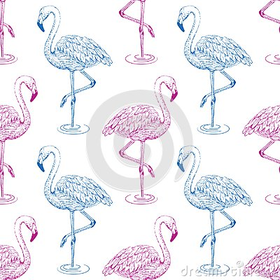 Free Flamingo Sketch Seamless Pattern.  Blue And Pink Flamingos On White Background Stock Photos - 114501813