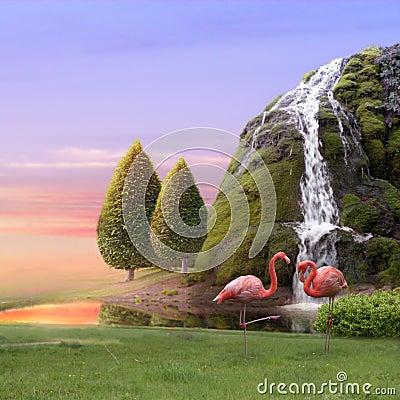 Free Flamingos Love Royalty Free Stock Photography - 8425217