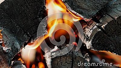Flamme brûlante colorée dans un feu de camp, feu de bois de feu Langues de feu sur les billes banque de vidéos