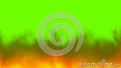 Flammen des wirklichen Feuers erreichen auf Farbenreinheitsschlüssel, grüner Schirmhintergrund einen Tiefstand lizenzfreie abbildung