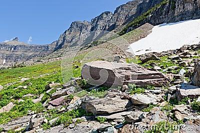 Flat Boulder