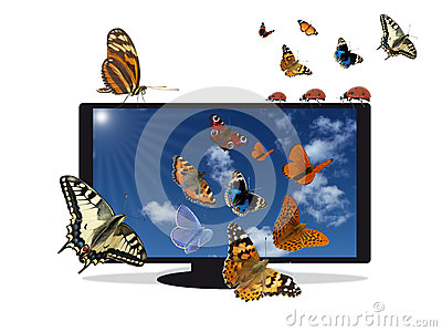 Flat TV with blue sky and insects