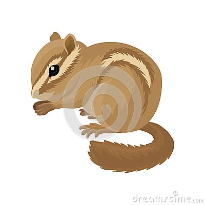 Free Flat Vector Icon Of Small Brown Chipmunk. Small Mammal Animal. Rodent With Cheek Pouches And Light And Dark Stripes Stock Photos - 119864943