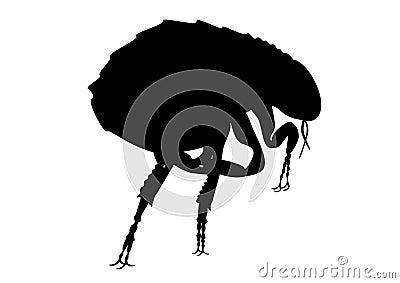 Flea silhouette
