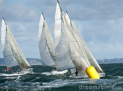 Fleet yacht at regatta