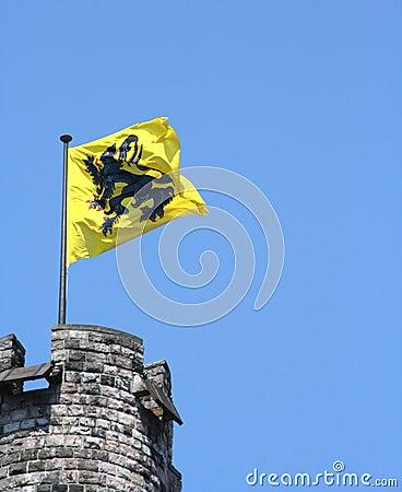 Flemish lion