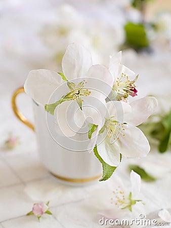 Fleur d Apple