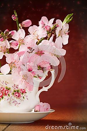 Fleur dans la tasse de thé