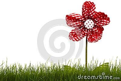 Fleur rouge de draperie avec l herbe
