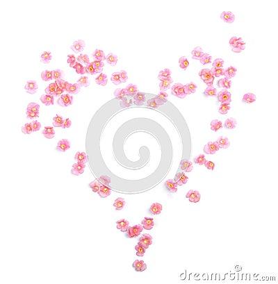 Fleurit le coeur