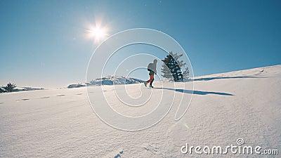 Flickalopp som fotvandrar i vinterberg som trekking i vintertid, ultrarapid stock video
