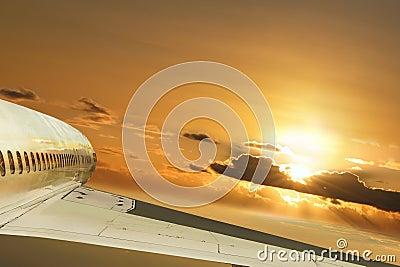 Flight in sun-rays. Conceptual.