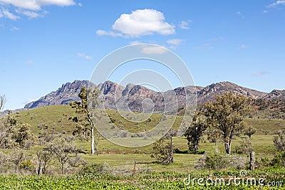 Flinders ranges australia