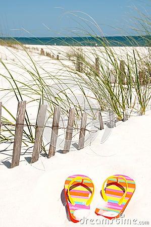 Flip flops on sand dune