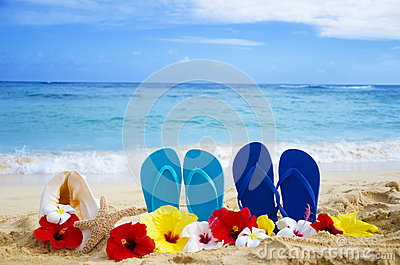 Flip flops, seashell and starfish with tropical flowers on sandy