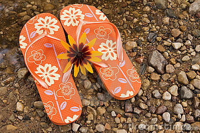Flip flops and yellow flower.