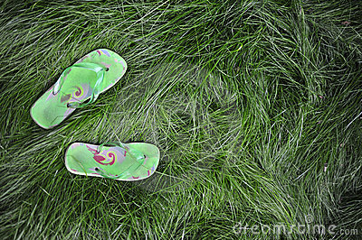 Flipflops in the grass